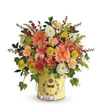 Papel de Parede Desktop Buquês Gerbera Alstroemeria Dianthus Fundo branco Flores