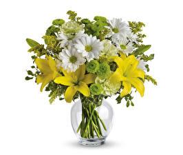 Hintergrundbilder Blumensträuße Lilien Chrysanthemen Weißer hintergrund Vase Blüte