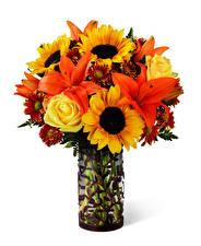 Fotos Sträuße Rose Sonnenblumen Lilien Weißer hintergrund Vase Blumen