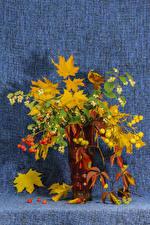 Wallpaper Bouquets Sorbus Vase Branches Foliage Flowers