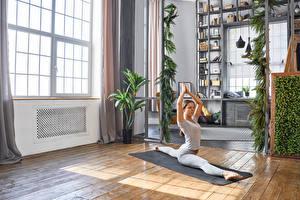 Bilder Fitness Trainieren Spagat Hand Mädchens Sport