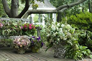 Hintergrundbilder Garten Sträuße Rosen Ast Natur