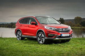 Picture Honda Red 2015-17 CR-V Worldwide auto