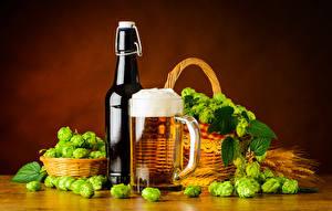 Images Hops Beer Wicker basket Bottles Mug Foam Food