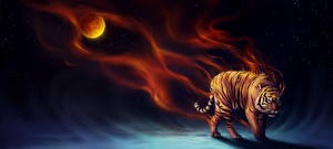 Pictures Magical animals Tigers Night Fantasy