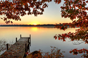 Images Rivers Marinas Autumn Sunrises and sunsets Branches Nature