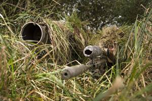 Images Snipers Telescopic sight Camouflage Grass Army