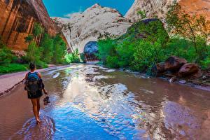 Bilder USA Grand Canyon Park Park Berg Stein Bach Natur Mädchens