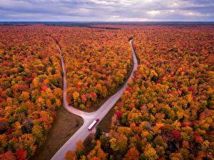 Fotos Vereinigte Staaten Landschaftsfotografie Herbst Wälder Straße Michigan Natur