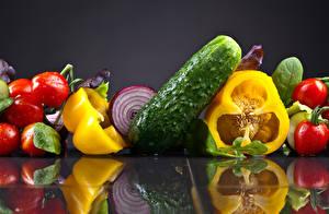 Fotos Gemüse Tomaten Gurke Paprika Grauer Hintergrund Reflexion
