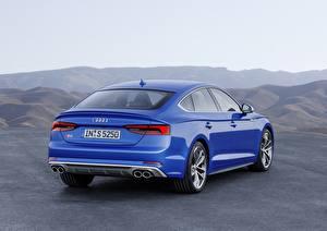 Sfondi desktop Audi Vista posteriore Blu colori 2018 A5 S5 Auto