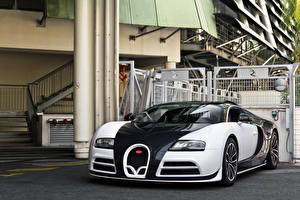 Photo BUGATTI Metallic Luxury 2014 Mansory Veyron  Linea Vivere