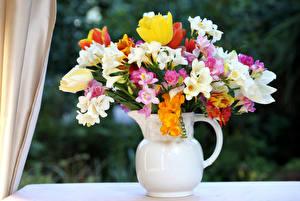 Bilder Blumensträuße Freesie Tulpen Vase Blüte