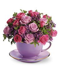 Hintergrundbilder Sträuße Rosen Weißer hintergrund Tasse Untertasse Blumen