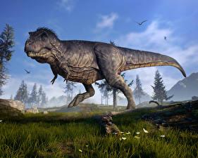 Images Dinosaurs Closeup Tyrannosaurus rex Grass 3D Graphics