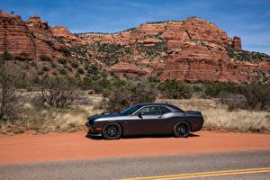 Hintergrundbilder Dodge Graue Seitlich 2015-16 Challenger 392 HEMI Scat Pack  Shaker Autos