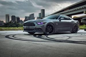 Fotos Ford Grau Mustang auto