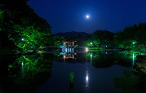 Pictures Japan Parks Pond Bridges Pagodas Trees Night time Moon Nara Park Nature