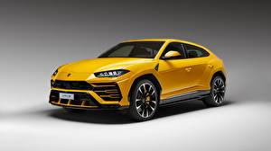 Picture Lamborghini Yellow Urus 2018 automobile
