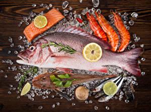 Photo Seafoods Fish - Food Caridea Lemons Ice Food