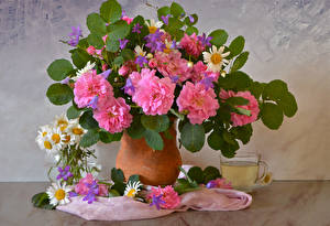 Picture Still-life Roses Camomiles Drinks Vase Cup Flowers
