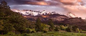 Image USA Scenery Mountains Trees Spruce San Juan Mountains Colorado Nature