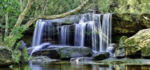 Fotos Australien Wasserfall Steine HDR Laubmoose Ast Jenolan Caves Blue Mountains Natur