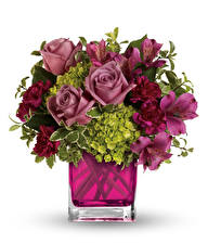 Papel de Parede Desktop Buquês Rosas Alstroemeria Dianthus Fundo branco Vaso Flores