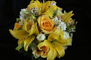 Pictures Bouquet Rose Lilies Alstroemeria Black background Yellow flower