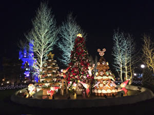 Pictures Christmas Japan Tokyo Disneyland Parks Christmas tree Design Night Nature