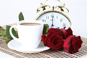Images Coffee Roses Clock White background Cup Red Flowers Food