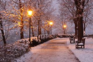 Wallpaper Czech Republic Park Winter Evening Snow Street lights Bench Trees Brno Nature