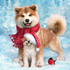 Pictures Dogs Christmas Akita Puppy Two Animals