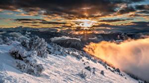 Bilder Frankreich Gebirge Winter Himmel Alpen Fichten Schnee Wolke Sarcenas Natur
