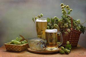 Pictures Hops Still-life Beer Fish - Food Wicker basket Mug Foam Highball glass Food
