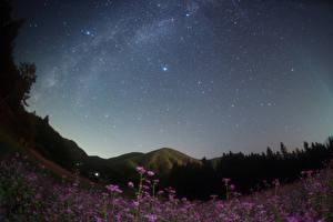 Bilder Japan Himmel Stern Gebirge Grünland Nacht Nagano Natur