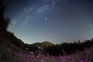 Wallpapers Japan Sky Stars Mountains Grasslands Night Nagano Nature