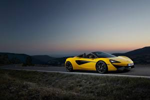 Fotos McLaren Gelb Cabriolet 2017 570S Spider Worldwide Autos