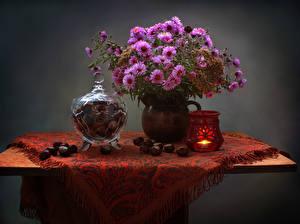 Fotos Stillleben Astern Kerzen Kastanien Tisch Vase Blumen