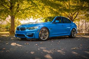 Images BMW Light Blue Sedan  automobile