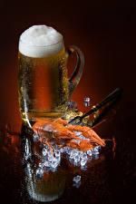 Wallpapers Beer Crayfish Colored background Mug Foam Ice Food