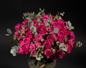 Pictures Bouquet Rose Black background Maroon Flowers