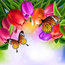 Hintergrundbilder Schmetterling Tulpen Monarchfalter
