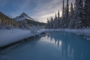 Bilder Kanada Park Winter Gebirge Flusse Landschaftsfotografie Banff Fichten Schnee Natur