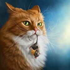 Desktop hintergrundbilder Hauskatze Mäuse Käse Blick ein Tier