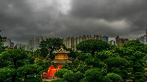 壁纸、、中華人民共和国、香港、公園、パゴダ、木、Lan Lian Garden、自然