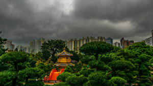 Sfondi desktop Cina Hong Kong Parco Pagoda Alberi Lan Lian Garden Natura