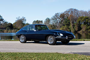 Bilder Jaguar Antik Blau Metallisch 1964-67 E-Type 4.2-Litre Fixed Head Coupe automobil
