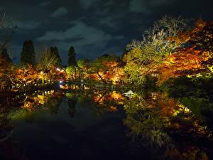 Картинки Япония Парки Пруд Отражение Деревьев Ночью Osaka Природа