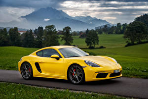 Photo Porsche Yellow Metallic 2016 718 Cayman S Worldwide Cars